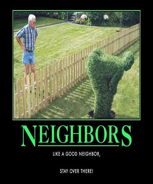 My-funny-neighbors